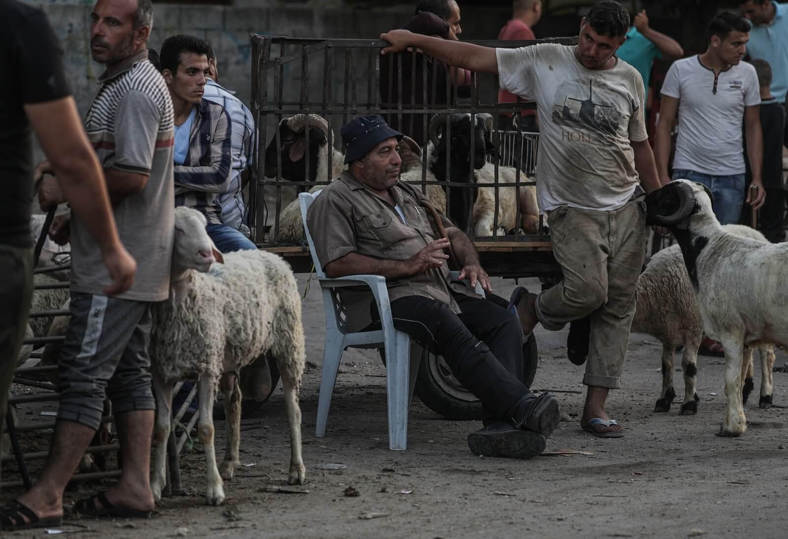 Przygotowania do święta Eid al-Adha w Stefie Gazy fot. EPA/MOHAMMED SABER