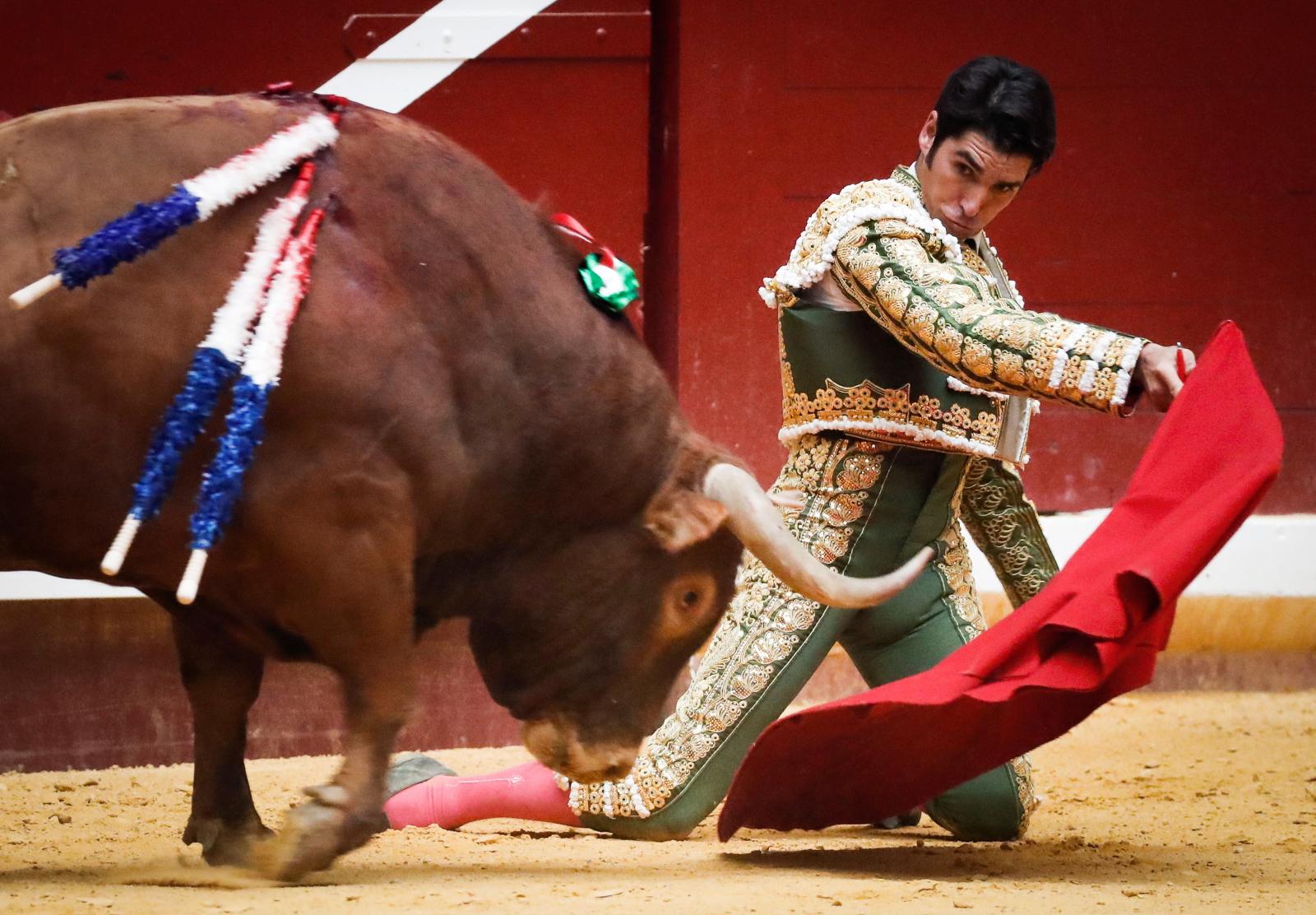 Walki byków w San Sebastian Fot. EPA/Javier Etxezarreta