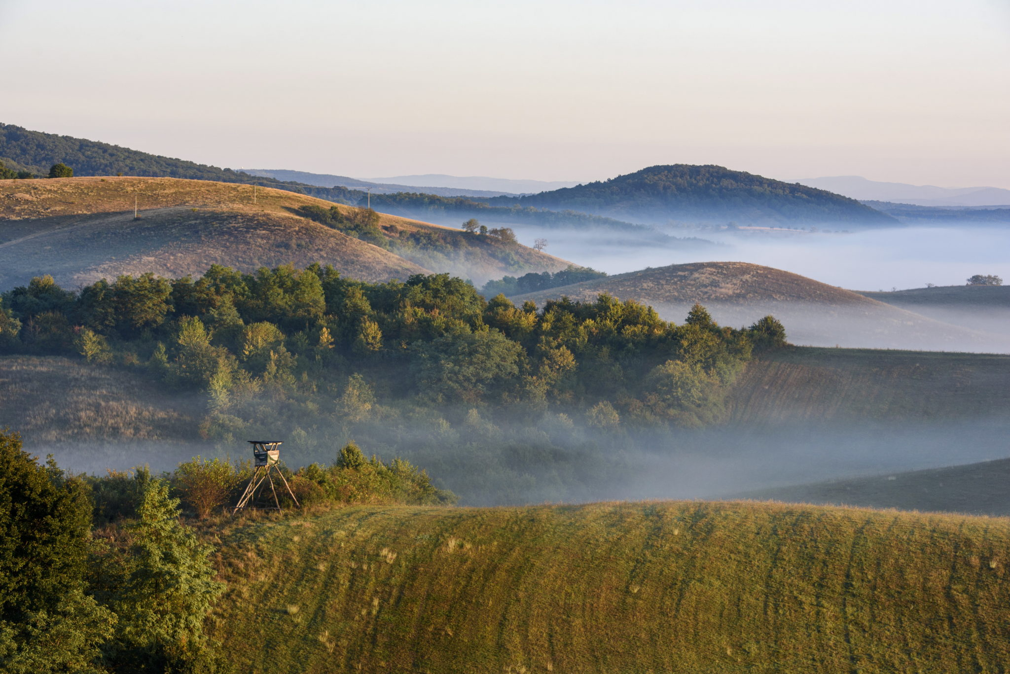 Poranna mgła nieopodal miejscowości Stara Basta na południu Słowacji. fot. EPA/Peter Komka