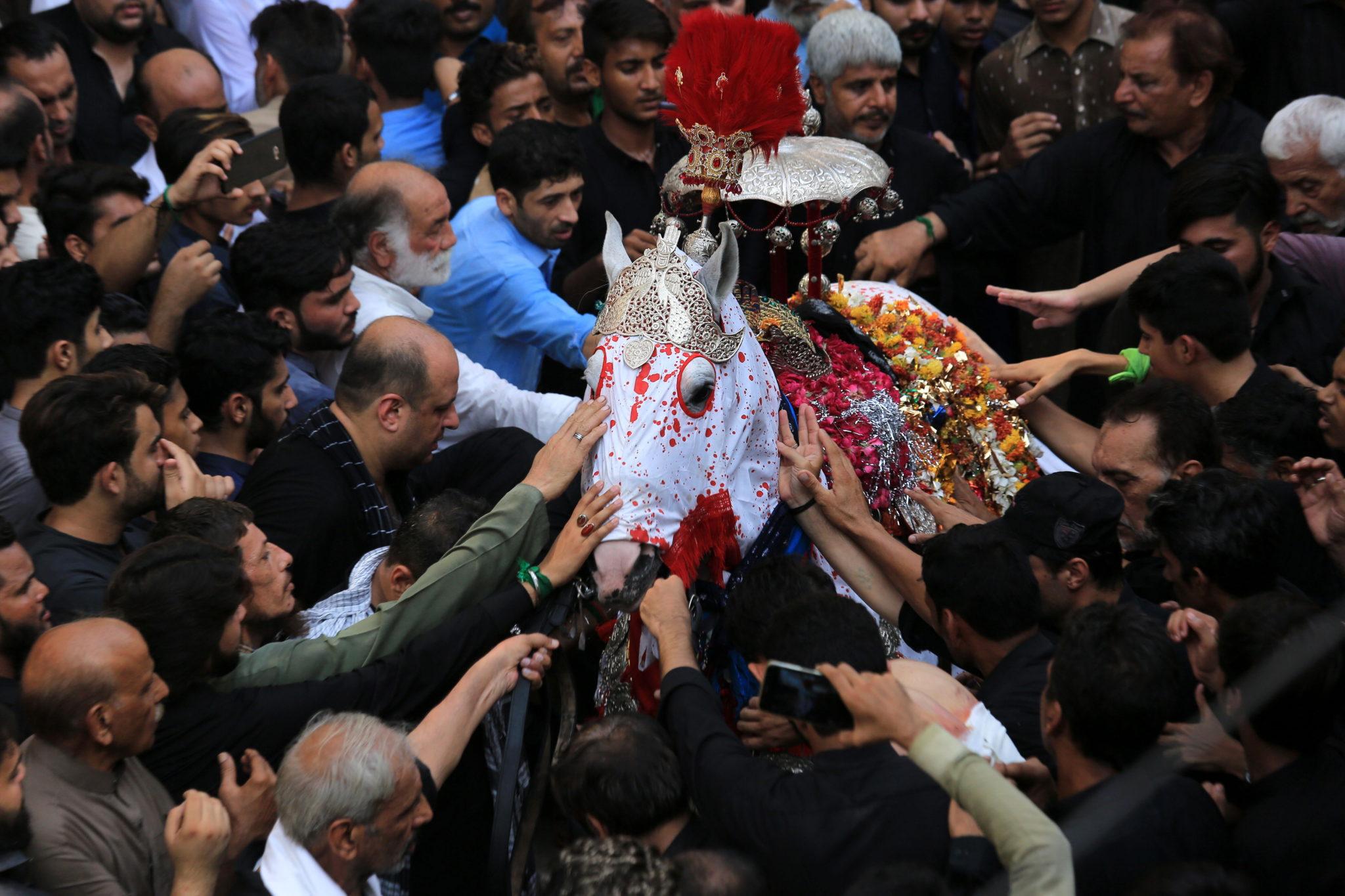 """Peszawar, Pakistan: szyici gromadzą się wokół """"Zuljinah"""" symbolizującego konia świętego z VII wieku Imama Hussaina podczas procesji w Ashura Day, fot. Arshad Arbab, PAP/EPA"""