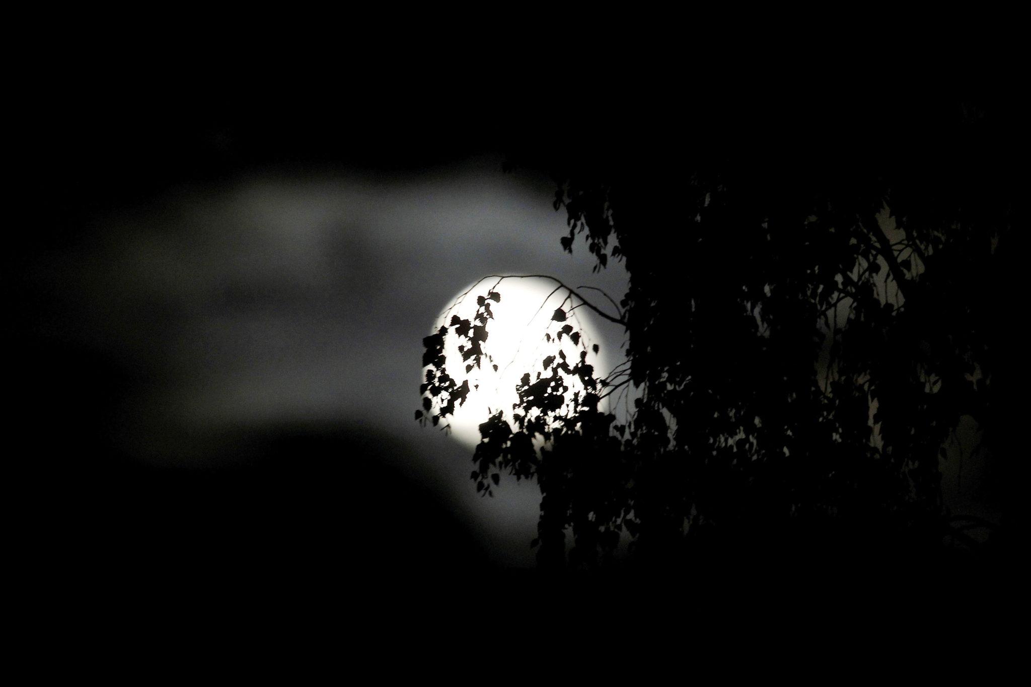 Litwa, pełnia księżyca, fot. PAP/EPA