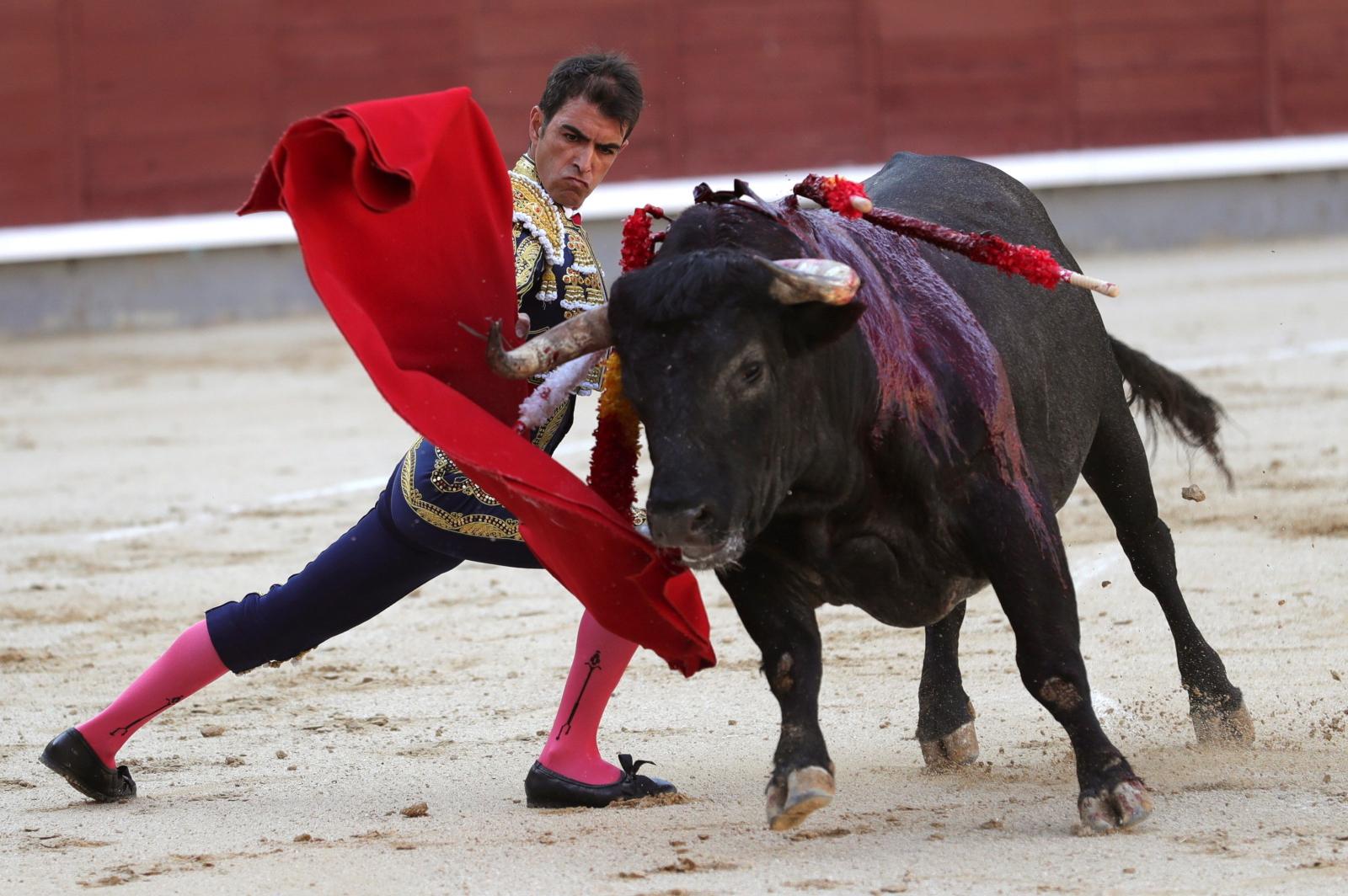 Zawody w Hiszpanii fot. EPA/JuanJo Martin