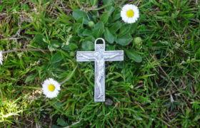 krzyż trawa