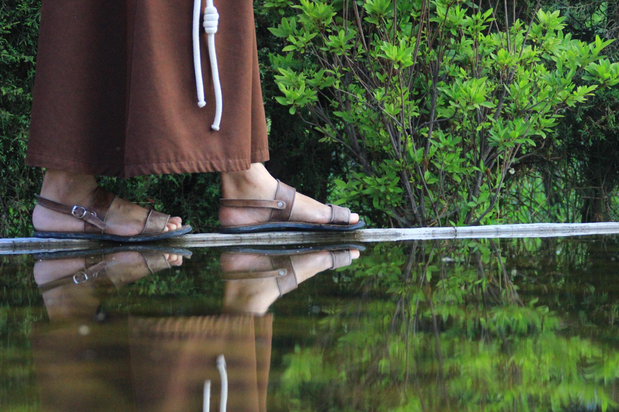 amazonia franciszkanin