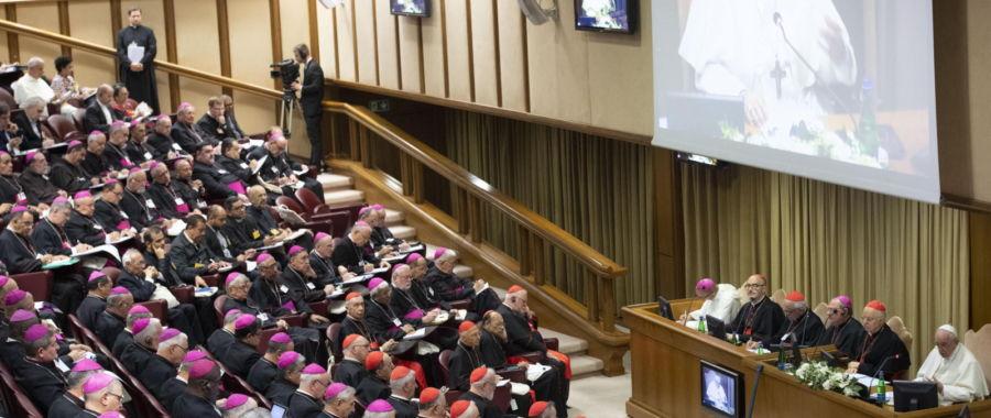 Synod dla Amazonii