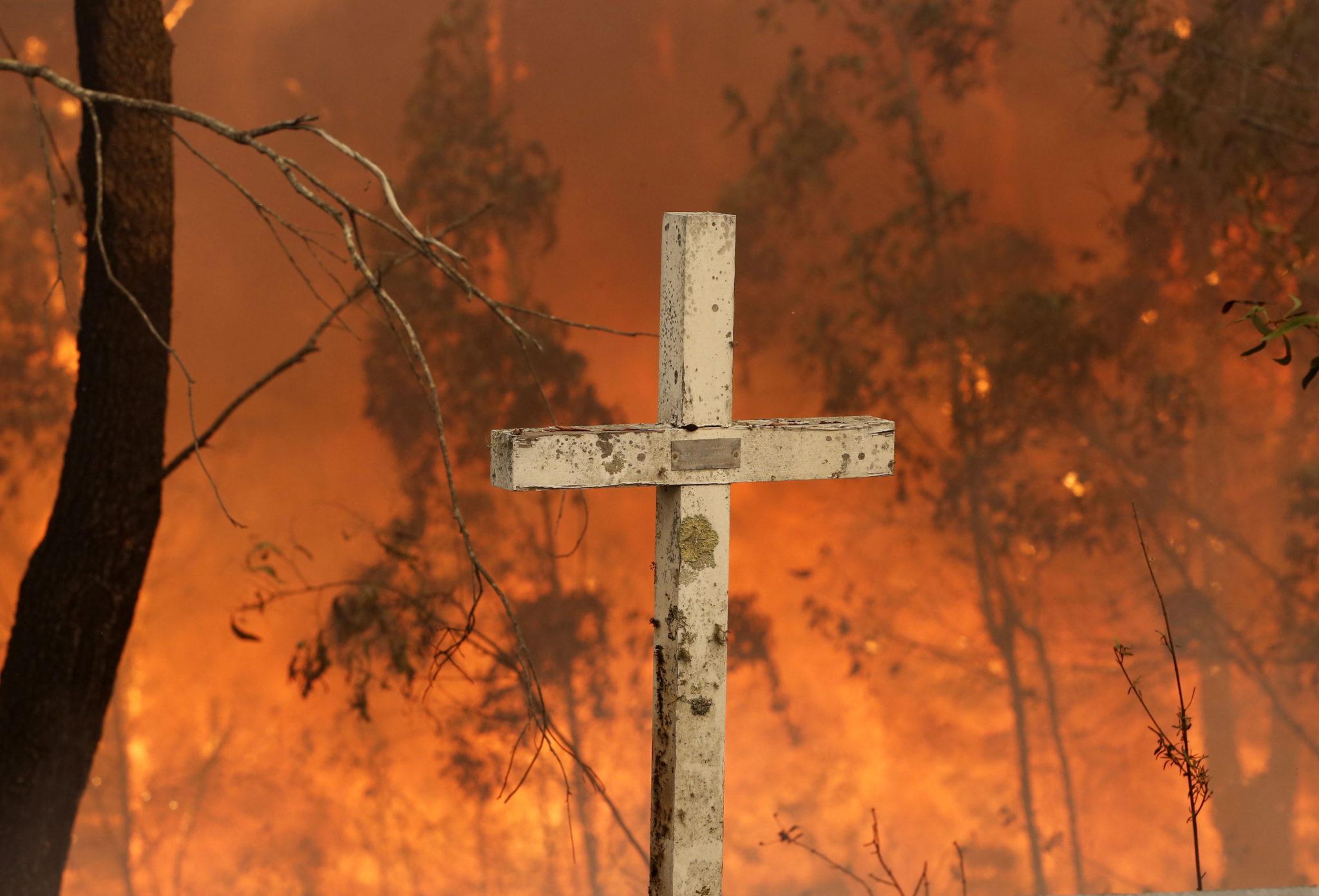 Pożary lasów szaleją na terenie Australii. fot.  EPA/DARREN PATEMAN