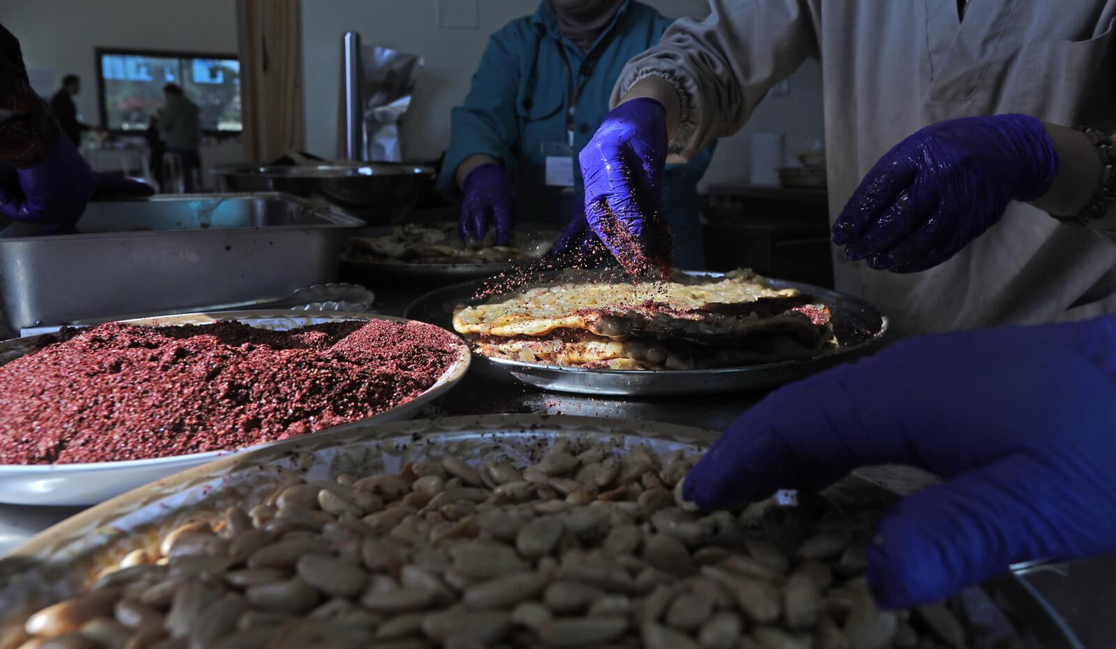 Sezon oliwkowy w Palestynie fot. EPA/ALAA BADARNEH