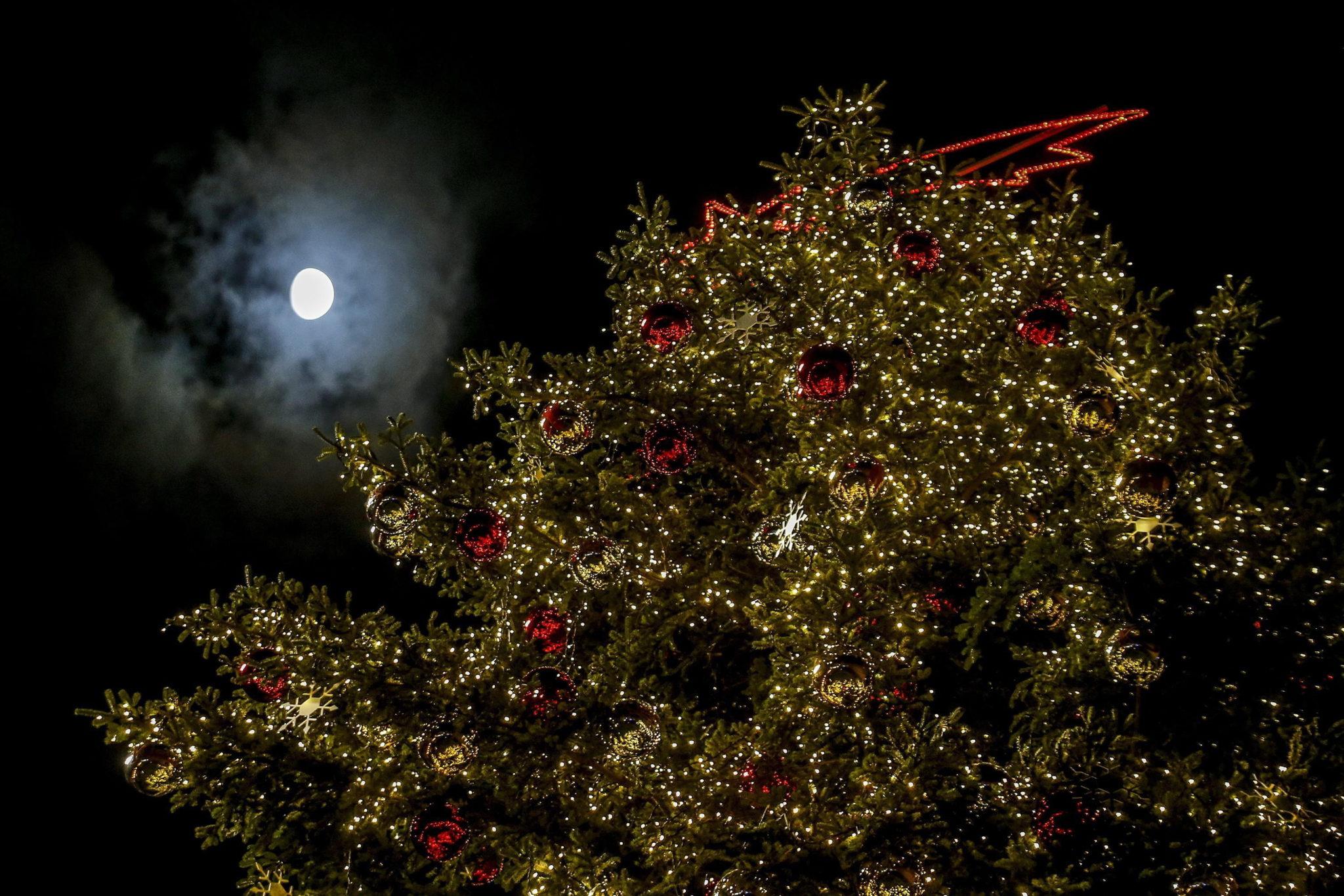 Ceremonia zapalenia światełek na choince w Rzymie, fot. EPA/FABIO FRUSTACI