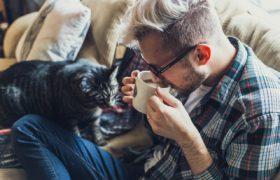 relaks kawa kot mężczyzna