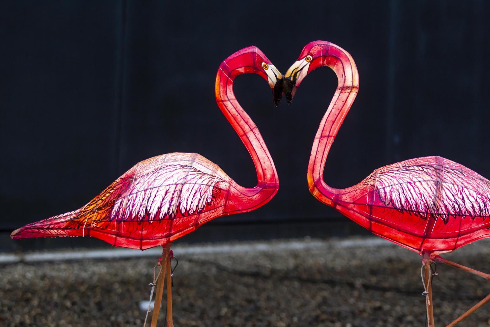Podświetlane zwierzęta w zoo we Wrocławiu fot. PAP/Aleksander Koźmiñski