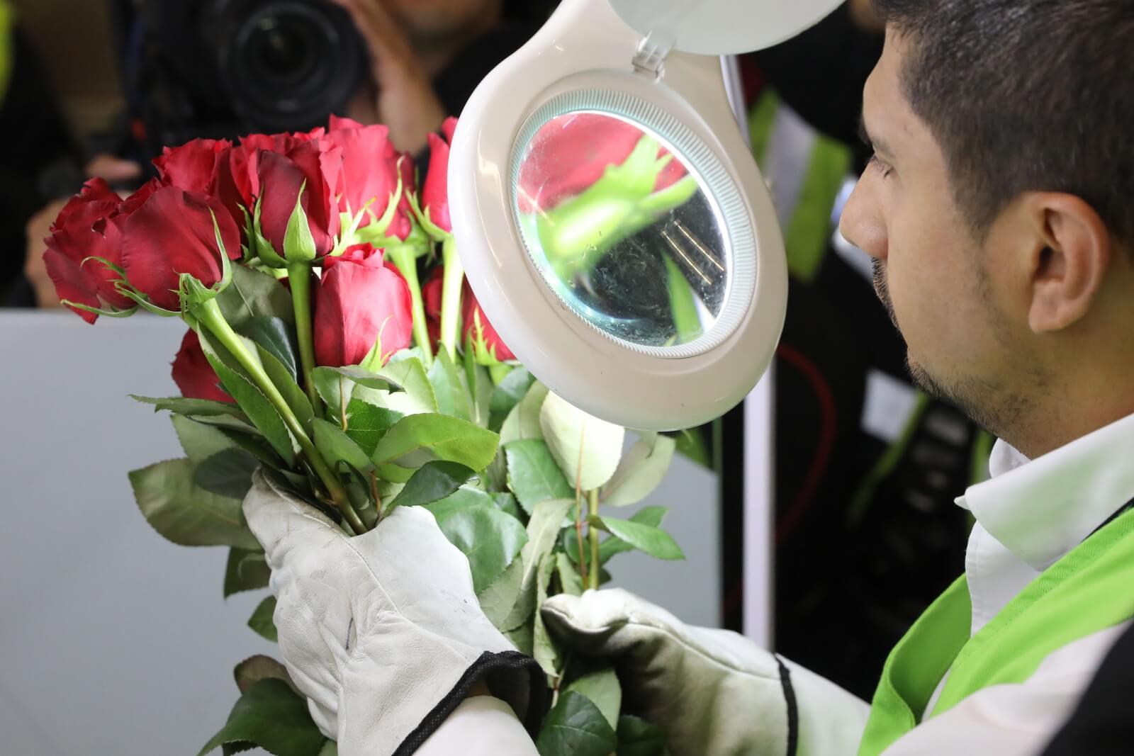 Eksport kwiatów z Kolumbii fot. EPA/Carlos Ortega