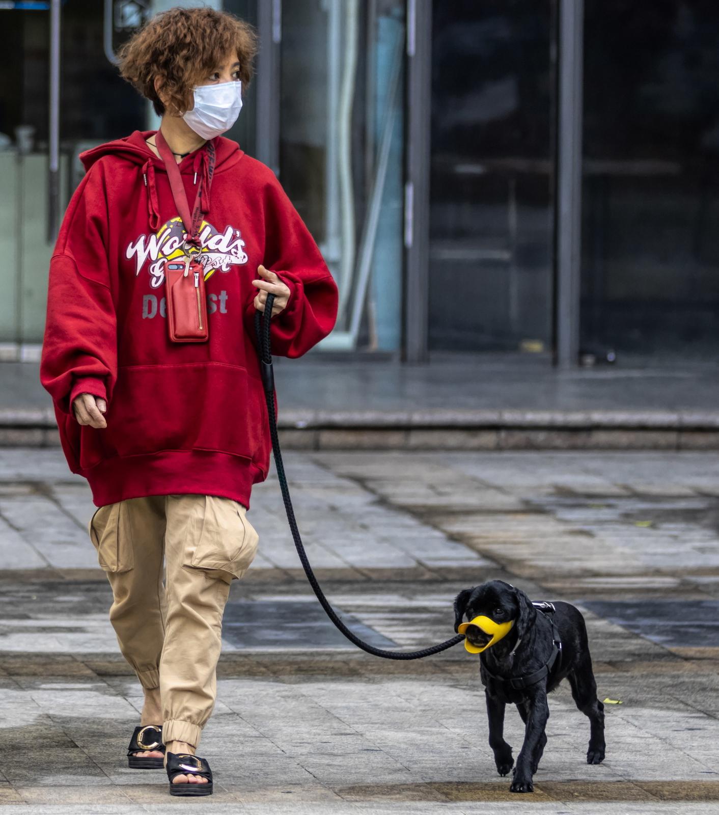 Spacer z psem w Chinach fot. EPA/ALEX PLAVEVSKI