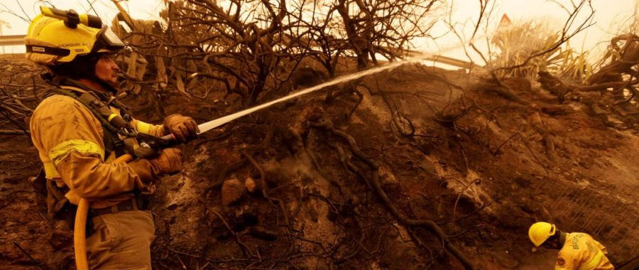Pożary na wyspach Kanaryjskich fot. EPA/RAMON DE LA ROCHA