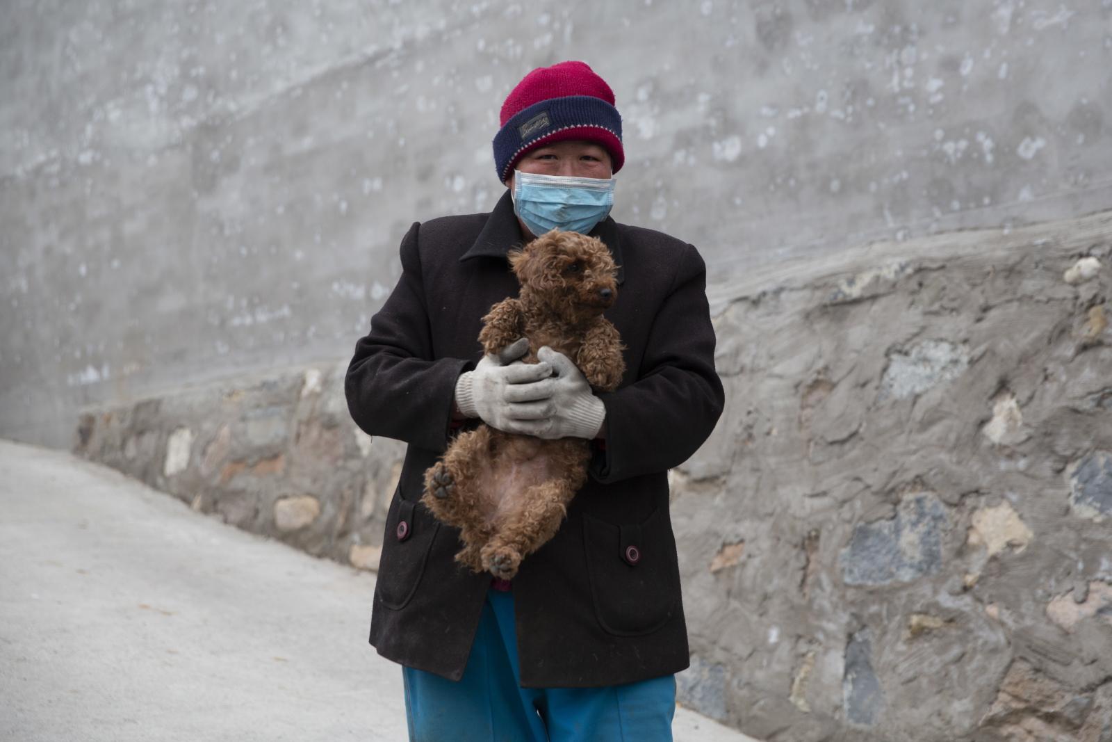 Pies w rejonie koronawirusa fot. EPA/WU HONG