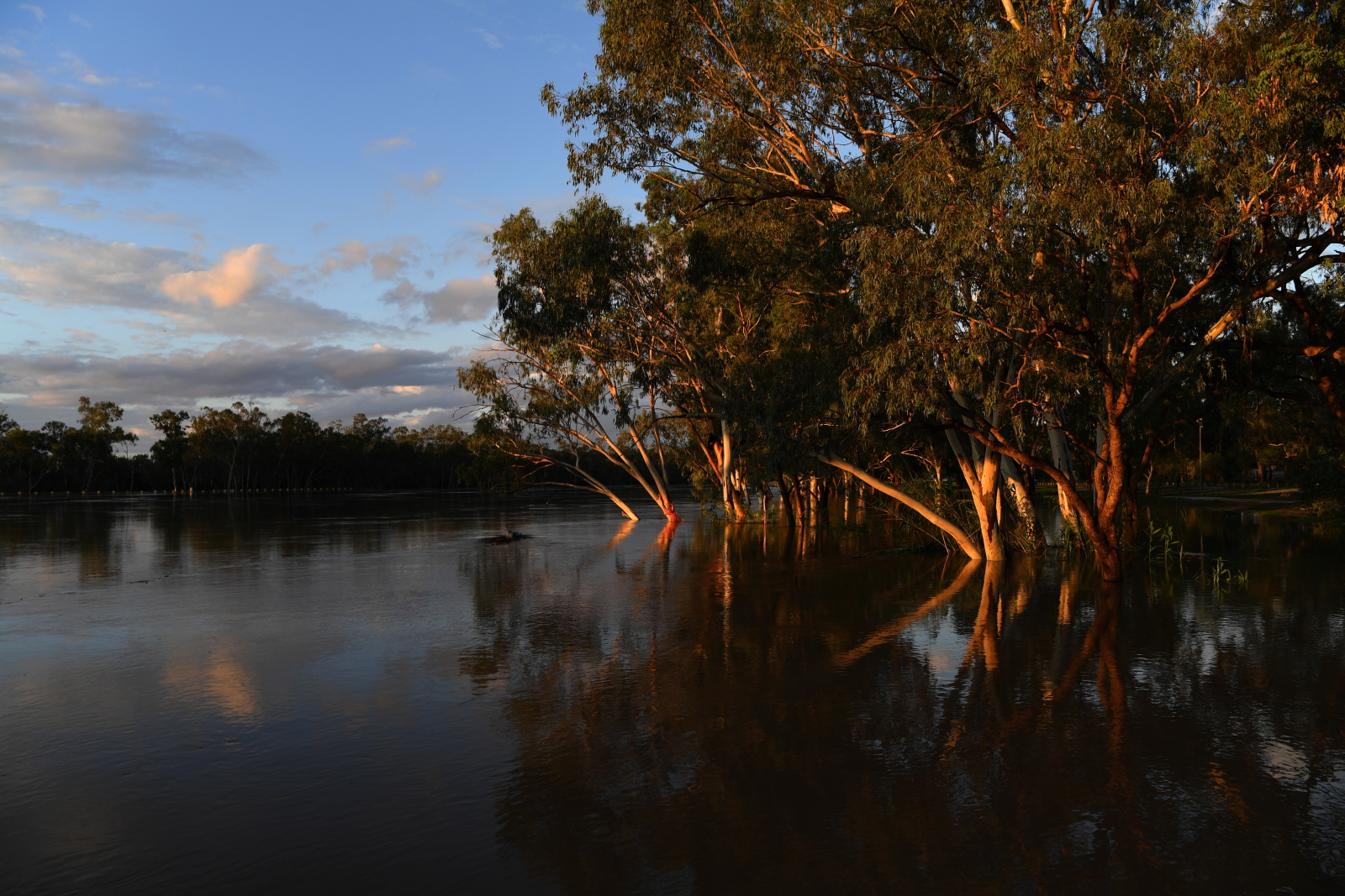 Powódź na wyspie fot. EPA/DAN PELED AUSTRALIA AND NEW ZEALAND OUT