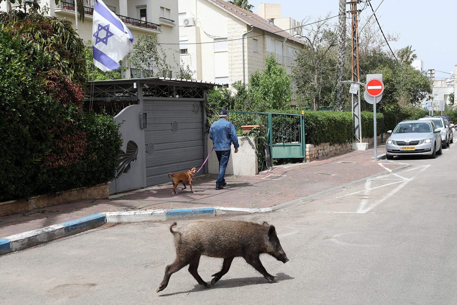 Ulice podczas pandemii koronawirusa w Izraelu fot. EPA/ABIR SULTAN