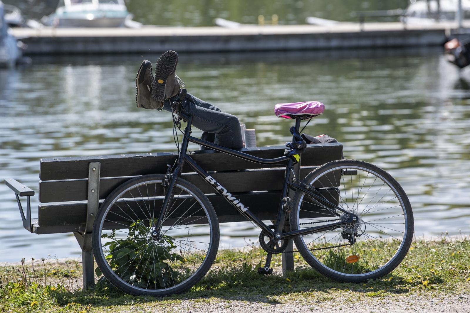 Wiosna w Szwecji EPA/Anders Wiklund