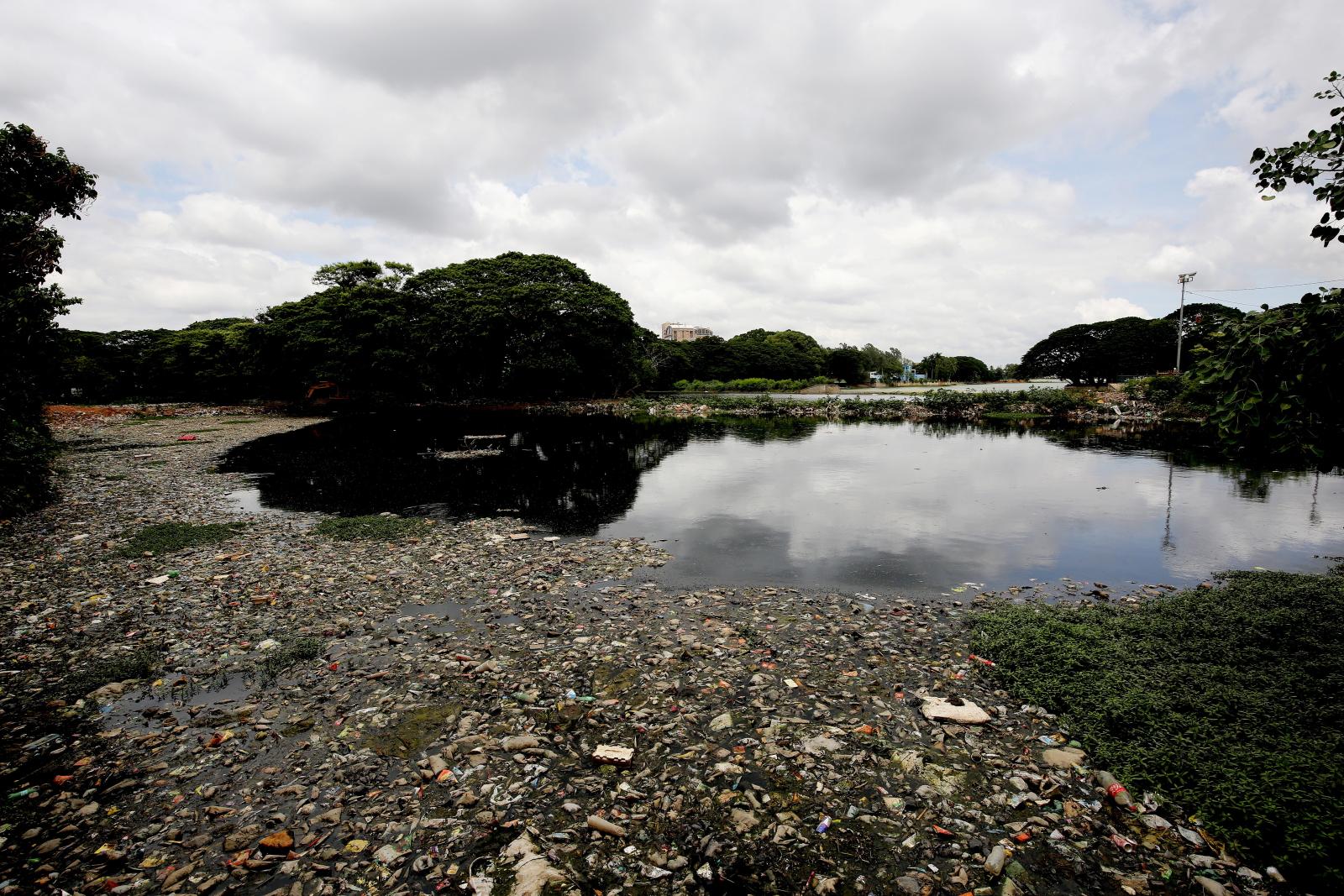 Śmieci w Indiach Fot. PAP/EPA/JAGADEESH NV